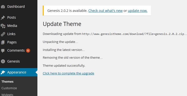 Genesis Theme update Process
