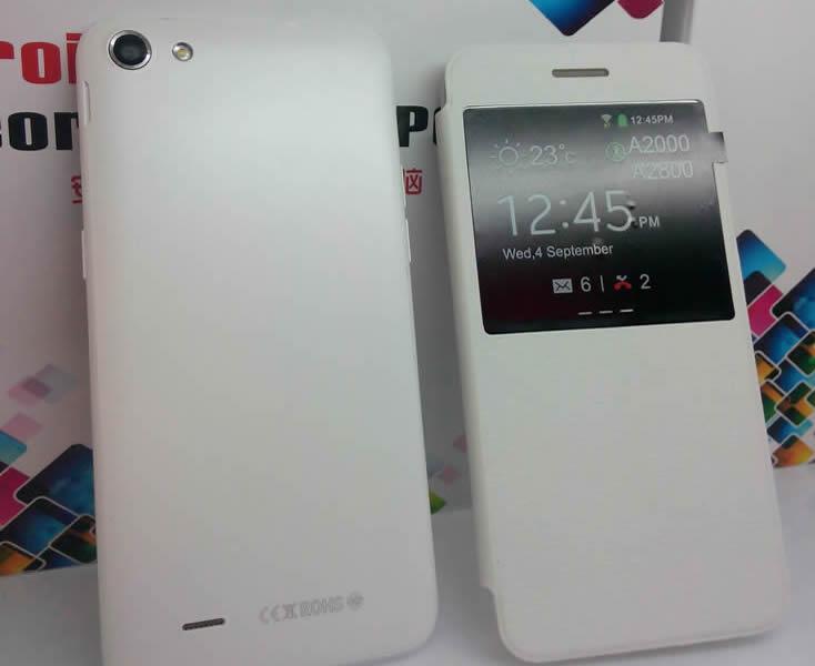 OrientPhone A2800