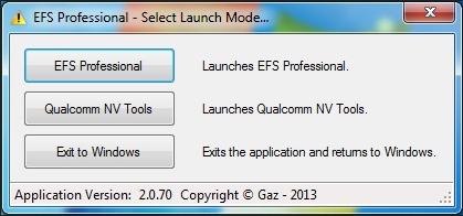 EFS Pro