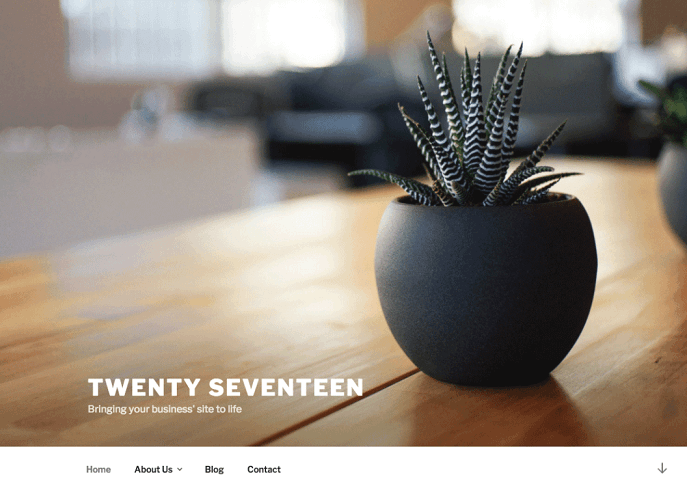 WordPress Twenty Seventeen Theme