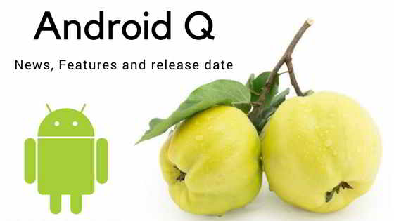 Android Q release date: Android Q update