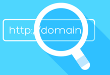 Domain Name Search online