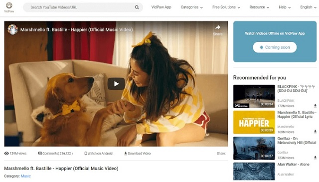 Stream videos on VidPaw